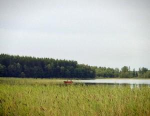 Grinnerödssjön (foto: Nicklas Rudolfsson)