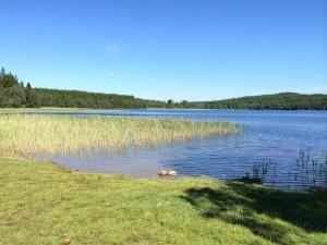 Grinnerödssjön